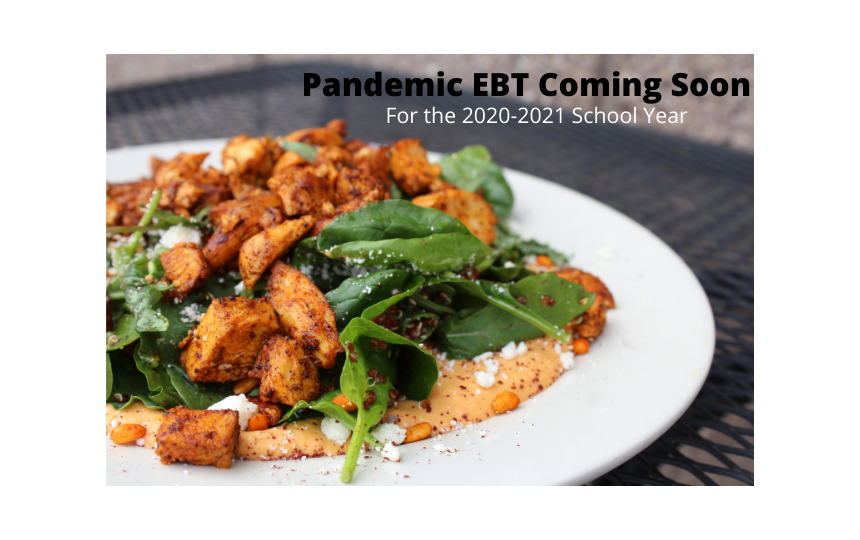 Pandemic EBT Benefits  Coming Soon
